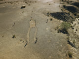 Men Study Giant Figure Scratched into Surface of Desert Mesa Photographic Print by Richard Hewitt Stewart