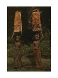 Two Balinese Women Carry Temple Offerings of Fruit on their Head Photographic Print by Franklin Price Knott