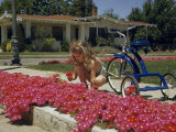 Girl Kneeling Beside a Tricycle Picks a Bouquet of Pink Flowers Photographic Print by Willard Culver
