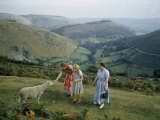 Women Pet Shy Sheep on Hillside Overlooking Green Valley Photographic Print by B. Anthony Stewart