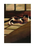 Black and White Cat Premium Giclee Print