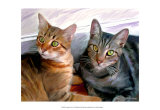 Sweepo and Tony Art by Robert Mcclintock