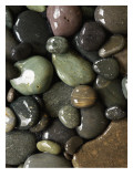 River Rocks in Water Poster