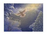 White Dove in Winter Landscape Posters