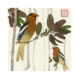 Pair of Birds on Branches Print