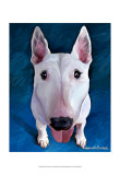 Bull Terrier Bronson Posters by Robert Mcclintock