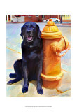 Lab's Best Friend Print by Robert Mcclintock