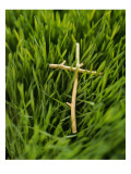 Cross in the Grass Print