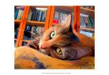 Kitty that Reads Print van Robert Mcclintock