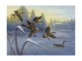 Geese on Winter Lake Prints