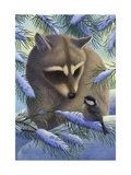 Raccoon and Chickadee in Snow Poster