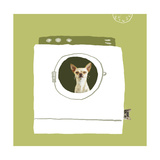 Dog in Dryer Prints