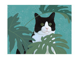 Black and White Cat with Green Eyes Premium Giclee Print
