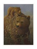 Brown Bear with Cub Prints