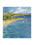 Sailboats Near the Coast Prints