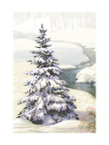 Single Pine Tree in Snow Premium Giclee Print