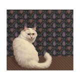 Long Haired White Cat Posters