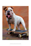 Bull Dog Nose Grind Print by Robert Mcclintock