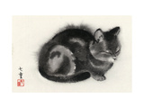 Sleeping Gray Cat Premium Giclee Print