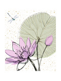 Abstract Lily Pad with Dragonfly Posters