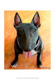 Bull Terrier Rhino Prints by Robert Mcclintock