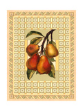 Pears on Patterned Background Poster