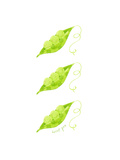 Three Peapods Prints