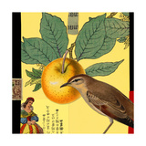Apple and Bird Collage Prints