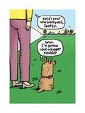 Dog's Dream Backyard Poster