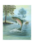 Rainbow Trout Jumping Posters