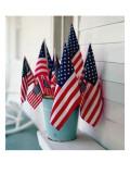American Flags Print