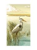 White Crane Art