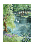 Two Swans on a Pond Posters