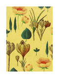 Flowers on Tan Background Prints
