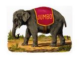 Jumbo the Elephant - Reprodüksiyon