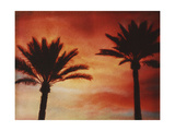 Palm Trees with Sun Plakater