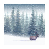 Elk in Snow Prints