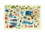 Zoo Animals Prints