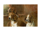 Hound Dogs Art