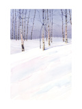 Winter Landscape with Birch Trees Prints