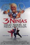 3 Ninjas Posters