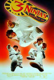3 Ninjas Knuckle Up Posters