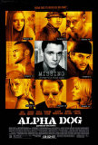 Alpha Dog Photo