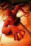 Spider-Man Plakat