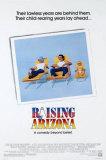 Arizona Junior Poster