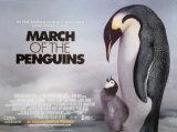 Marsz pingwinów Plakaty