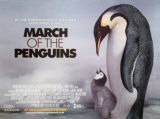 Pingvinresan Posters
