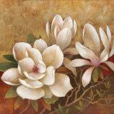 Sweet Magnolia II Kunstdruck von Elaine Vollherbst-Lane