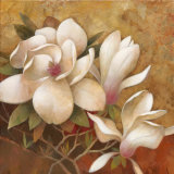 Sweet Magnolia I Prints by Elaine Vollherbst-Lane