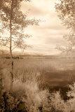 Peaceful Morning I Poster par Monte Nagler